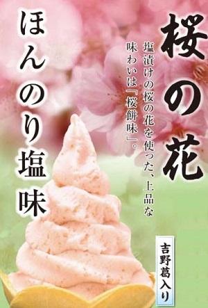ジェラート桜の花